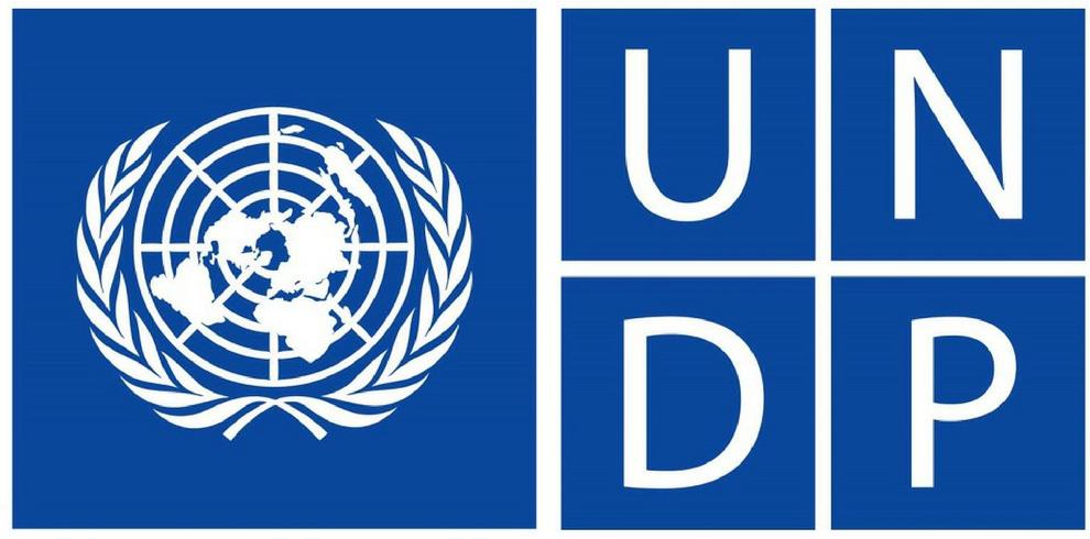 Job - Technical Task Leader - Women in Politics, UNDP, Armenia