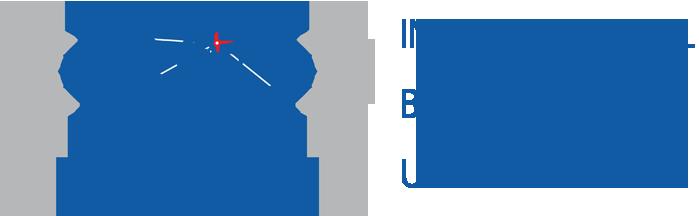 International Black Sea University Logo