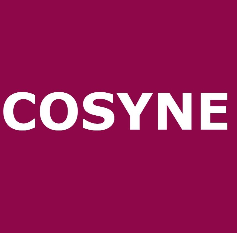 COSYNE (Computational and Systems Neuroscience) Logo