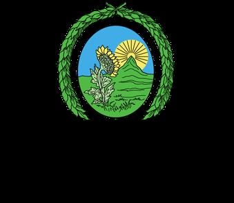 Universidad de Costa Rica Logo