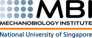 Mechanobiology Institute Logo