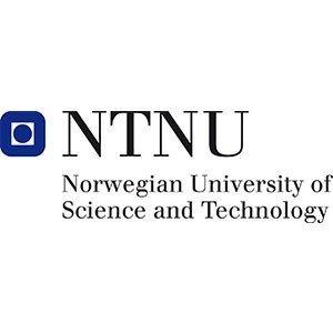 Norwegian University of Science & Technology Logo